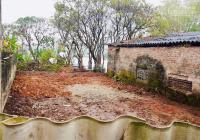 Chính chủ cần bán nhanh 77m2 đất thổ cư mặt đường Thành Công, phường Đồng Mai, Hà Đông