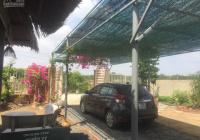 Nhà vườn 1700m2 trên trục đường 826C - Phước Vĩnh Tây - sẵn vườn cây, ao cá, đường xe hơi: 3,4 tỷ