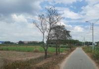 Bán đất 1/ Huỳnh Minh Mương 2019m2 thổ cư 300m2, ngang 32x62m, gần khu CN cơ khí Samco