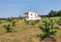 Bán đất xã Xà Bang, Châu Đức, thổ cư, có nhà, có vườn cây, hệ thống tưới tận gốc, LH 0932004566