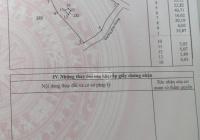 Cần bán đất sào giá rẻ tại xã Xuân Thành