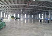 Cho thuê kho xưởng VIP 5500m2 mặt tiền đường Quốc Lộ 1A, Phường An Lạc, Quận Bình Tân