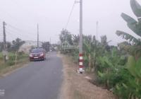 Chính chủ bán nhà vườn, ao cá 2200m2 mặt tiền đường Tây Bắc - Cần Giuộc, SHR, giá 3,1 tỷ