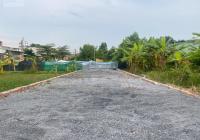 Đất sát Trục 16, Thạnh Phú, sau lưng Công ty Vĩnh Hoàng