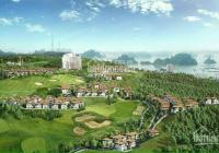 Chính chủ cần bán nền BT (240m2) dự án BH New City gần bến du thuyền, nhà hàng, giá 16tr/m2