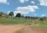 Bán đất mặt tiền lớn Lý Thái Tổ, Dambri, thành phố Bảo Lộc