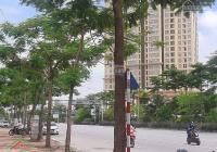 Bán nhà phố Võ Chí Công, Tây Hồ, nhà vip, ô tô đỗ