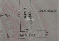 Chính chủ bán lô đất 52m2 gần chợ Hương, đường Mạc Đăng Doanh, Dương Kinh