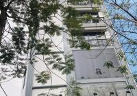 Chính chủ cho thuê nhà 7 tầng x 50m2, phố Võ Chí Công