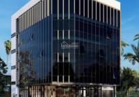 Tòa nhà xây mới cực đẹp cho thuê MT đường Lũy Bán Bích, DT 10x30m