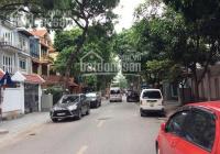 Chính chủ cần cho thuê biệt thự Mỹ Đình II, phố Lê Đức Thọ, quận Nam Từ Liêm