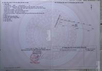 Bán 5935m2, ngay mặt tiền Dương Thị Ngọc Hoa, Cần Giuộc, Long An