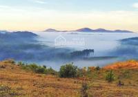Bán đất sổ riêng nông nghiệp 0989703968. Đạ Sar - Lạc Dương - Lâm Đồng