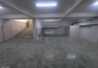 Cho thuê biệt thự đường Hoa Lan 1 hầm 3 lầu thích hợp làm văn phòng công ty, spa, thẩm mỹ