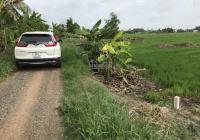 Bán đất thổ cư xã Thuận Thành DT 700m2 giá bán 3.7 triệu/m2 Cần Giuộc Long An