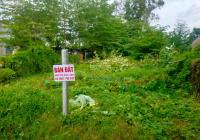 Chính chủ bán 2 miếng đất thổ cư đẹp chỉ 700 triệu tại Xã Mỹ Long, Huyện Cao Lãnh, Tỉnh Đồng Tháp