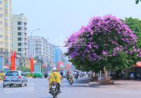 Đất mặt phố Đào Tấn, Ba Đình, Hà Nội: 160m2, MT 7m. Giá 55 tỷ