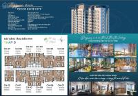 Chủ đầu tư trực tiếp bán căn hộ 2 và 3 phòng ngủ view đẹp, phải mua ngay vì chiết khấu quá khủng