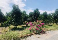 Đất vườn nghỉ dưỡng nằm gần ngay Hồ Trị An, Sông La Ngà khí hậu mát mẻ chỉ 499 triệu/ sào (1000m2)