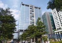 Cho thuê văn phòng hạng B Peakview 36 Hoàng Cầu 100m2-300m2 đẹp nhất Đống Đa, giá cực tốt năm 2021