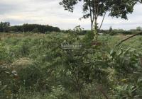 Bán đất NN + ít thổ cư hẻm Triệu Quang Phục - Dương Kỳ Hiệp, LH 0932696699