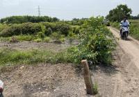 Đất vườn An Tây 69, Bến Cát, 5000m2 đường xe hơi vào tận đất thích hợp đầu tư làm vườn, nghỉ dưỡng