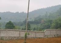 Bán 3350m2 400m2 thổ tại Cư Yên Lương Sơn tường bao rõ ràng cải tạo đẹp đường oto tránh giá đầu tư