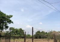 Bán gấp 2228m2 (45x50m), lô góc 2 mặt tiền sông Đồng Nai siêu đẹp, thuộc xã Bình Hòa, Vĩnh Cửu