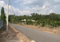 Cần bán gấp lô đất 1500m2 mặt tiền đường Bàu Lách (Vành Đai 4)