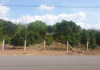 Hụt vốn bán gấp 1479m2(30 x 48) đất MT đường Vành Đai 4, thổ cư 300m2, đối diện KCN dân cư đông đúc