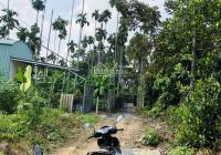 Bán đất P. Phú Thọ gần Ngã Tư Địa Chất, DT: 21x29m, giá rẻ