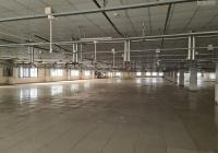 Cho thuê kho khu công nghiệp Tân Tạo Q. Bình Tân. DT 3400m2/300tr/tháng