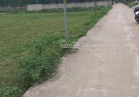 Cần việc bán gấp 2 lô đất ở đường Tỉnh Lộ 2, thị trấn Nông Trường Việt Trung, Huyện Bố Trạch QB