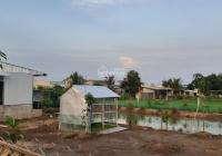 Bán 500m2 đất nhà vườn thị trấn Cần Giuộc, đường xe Hơi vô đất, SHR, điện nước đầy đủ. giá: 1.6 tỷ