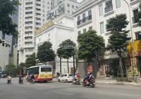 Cần bán shophouse liền kề Đỗ Đình Thiện, DT 146m x 6,6m, giá 29,5 tỷ. KD Vô địch - LH 0832.108.756
