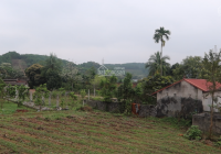 Siêu phẩm đất nghỉ dưỡng đẹp nhất ngay tại thị trấn Ba Hàng Đồi, Hòa Bình