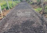 Cần bán 1000m2 đất gần hồ Trị An - Định Quán, Đồng Nai chuyển đổi lên thổ cư được