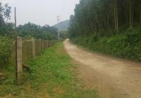Bán gần 1,3ha TC 4000m2 siêu đẹp hợp trang trại nhà vườn, cách đường Hồ Chí Minh 300m Yên Thủy, HB
