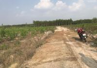 Bán 9ha đất đường xe hơi Xuân Thành, Xuân Lộc, Đồng Nai, giá 115tr/sào, LH: 0846.339.579