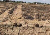 Đất lúa tại Long Phụng, Cần GiuộC, lô 3 đường nhựa, diện tích: 200m2, giá chỉ 150tr, 0902929550