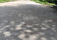 3483m2 đất có 100m2 thổ cư xã Nhơn Thạnh chùa Liên Sơn trồng cây đang có thu hoạch