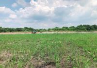 Bán gấp đất thổ cư 100% Bình Khánh đường xe hơi chỉ với 6,5tr/m2