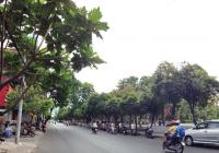 Cho thuê nhà Lê Lai, Quận 1, 3.8x28m, giá 55 triệu/tháng, trệt + gác