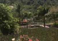Biệt thự nghỉ dưỡng sinh thái, sát QL51, dưới chân KDL FLC Núi Dinh, BRVT, S 10 ha. 0984765228