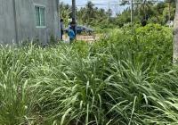 Chính chủ cần bán gấp đất mặt tiền đường nhựa tại huyện càng long - Trà Vinh