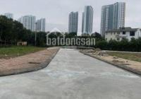 Chính chủ bán gấp lô góc 90m2 DV1 sát Ecopark và Vin Ocean Park, bán nhanh trong tuần LH 0966399881