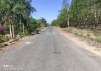 Cần bán 3ha đất chủ trương làm trang trại ở Phú Giáo