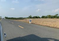 Bán đất đường nhựa 846, P. Mỹ Tân, TP Cao Lãnh