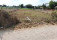 Đất đường nhựa Trương Tấn Sang vô 30m, thuộc Đức Hòa; Long An. 466m2, SHR thổ 100%