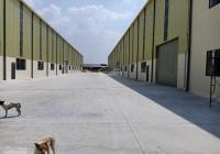 Cho thuê 500m2, kho xưởng đường xe công, Gò Vấp